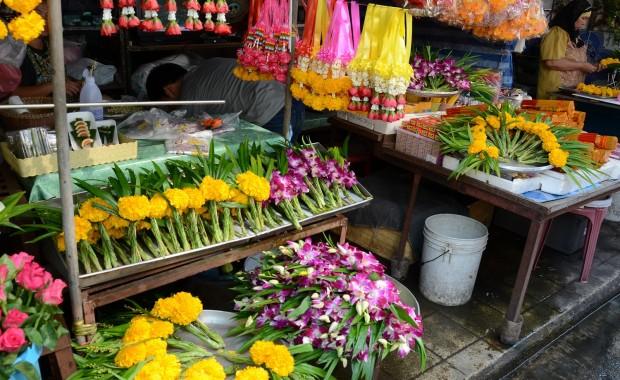 Stage Yoga Thaïlande Marche aux fleurs