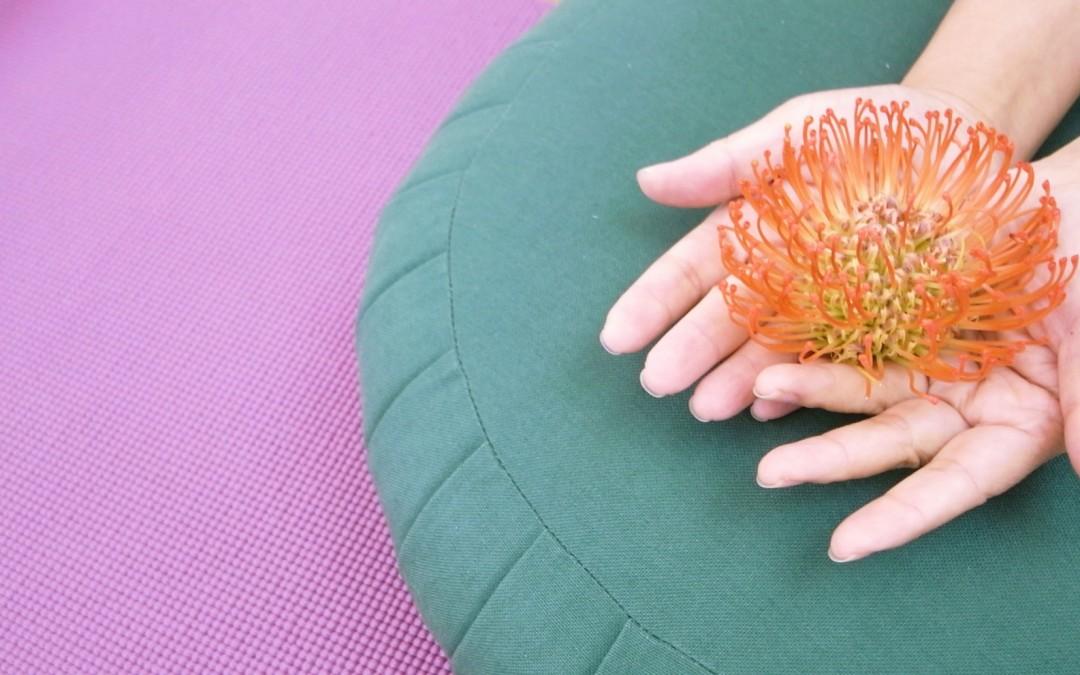 main fleur coussin Cours stages Yoga hatha exercices posture yogamanjali filla brion Paris 20